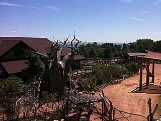 Gehege im Cheyenne Mountain Zoo. © erocsid