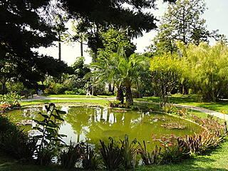 Teich im Jardin Botanique Exotique Val Rahmeh, Menton. © Daderot